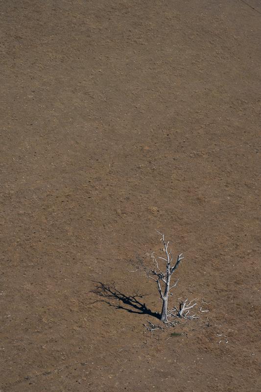 Kilcoy - it was so dry